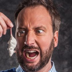 Tom Green's European Comedy Road Trip